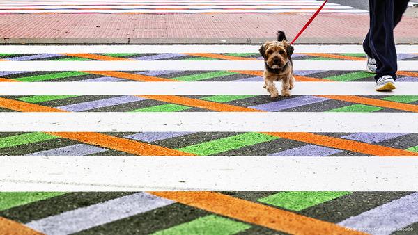 横断歩道がカラフルにペイントされたスペインの首都マドリード (2)