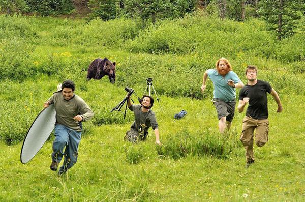 カメラに興味津々な動物の画像 (26)