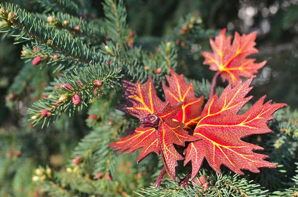 木の葉と一体となった小さなドラゴンの彫刻 3