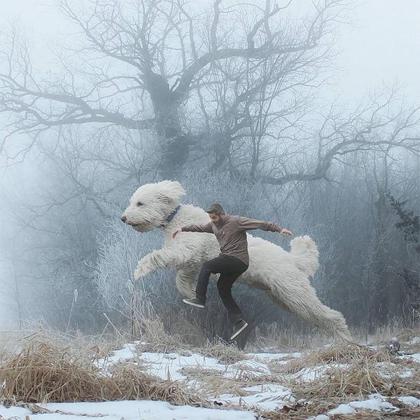 犬を大きくする!そんな夢をフォトショップの画像加工 (14)