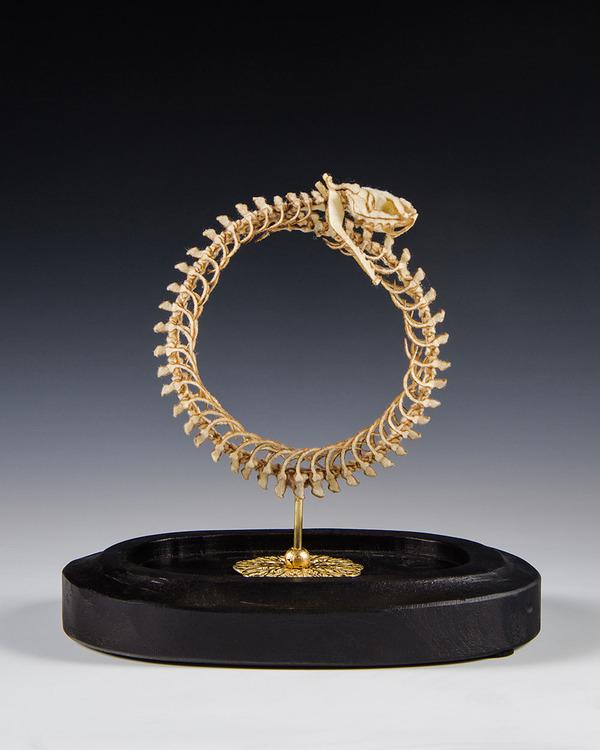 ウールやシルクから作られた骨格標本アート (5)