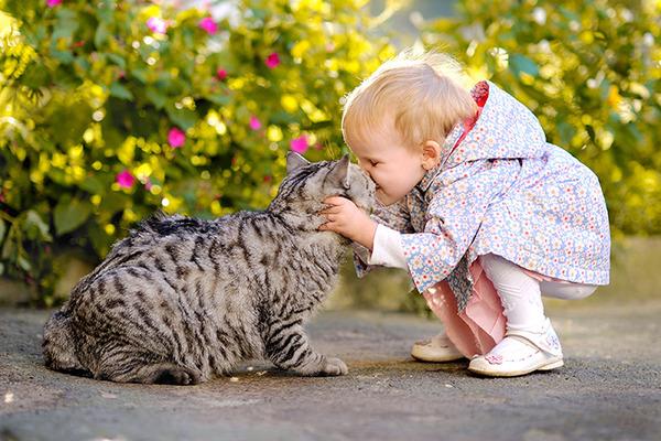 ペットは大切な家族!犬や猫と人間の子供の画像 (12)