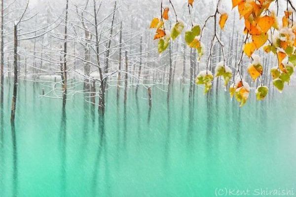 天気によって色が変わる池