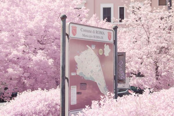 赤外線カメラで撮影されたイタリア・ローマの景色が幻想的 (1)