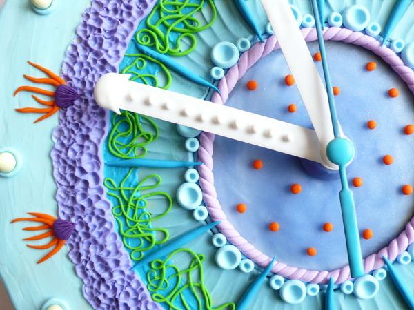 デコケーキっぽい壁掛け時計 (11)