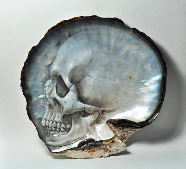美しい質感。貝殻に髑髏(ドクロ)を彫った彫刻作品 (2)