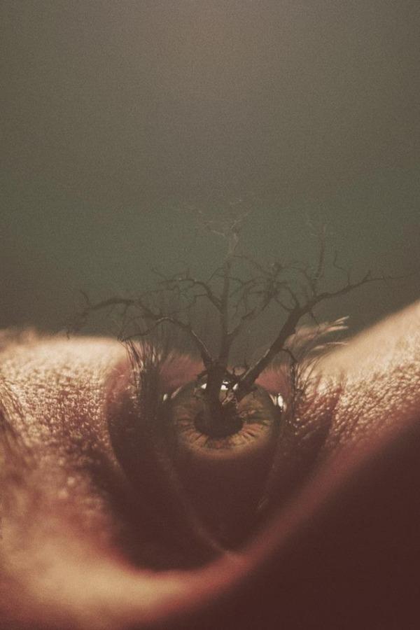 瞳をデジタル加工したアート  Nevan Doyle 6