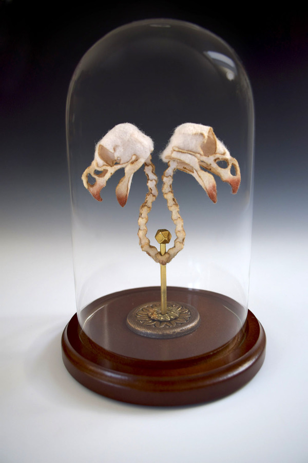 ウールやシルクから作られた骨格標本アート (7)