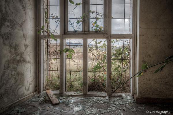廃墟の部屋の窓から覗く風景 3