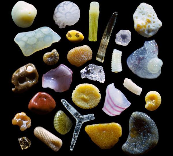 顕微鏡で見た美しいハワイの砂 1