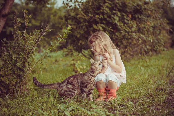 ペットは大切な家族!犬や猫と人間の子供の画像 (7)