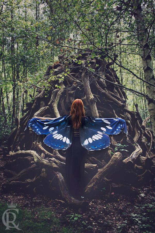 蝶の羽根模様のスカーフデザイン (6)