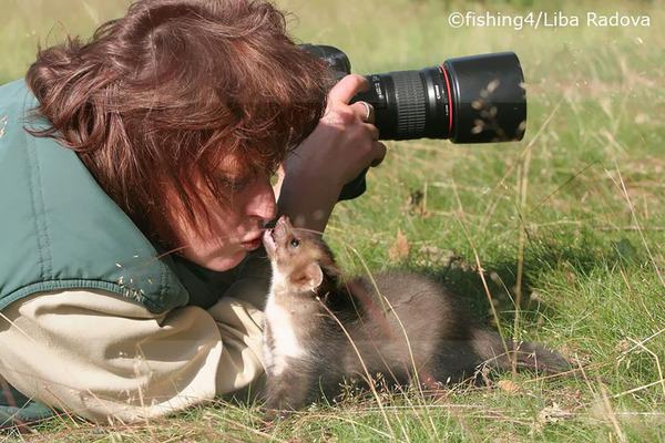 カメラに興味津々な動物の画像 (6)