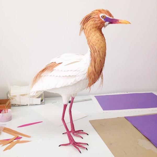 カラフル!リアル!鳥や蝶をモチーフにした紙の彫刻作品 (17)