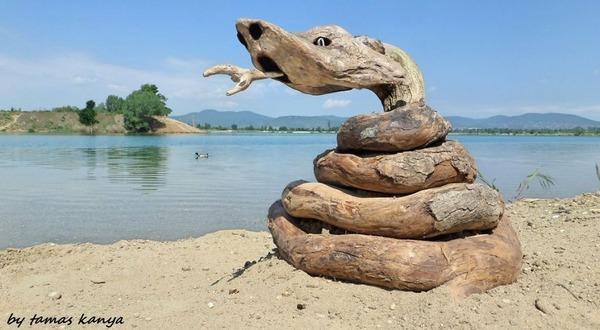 歪な形がゾンビっぽい!ドナウ川の流木で作られた彫刻作品 (16)