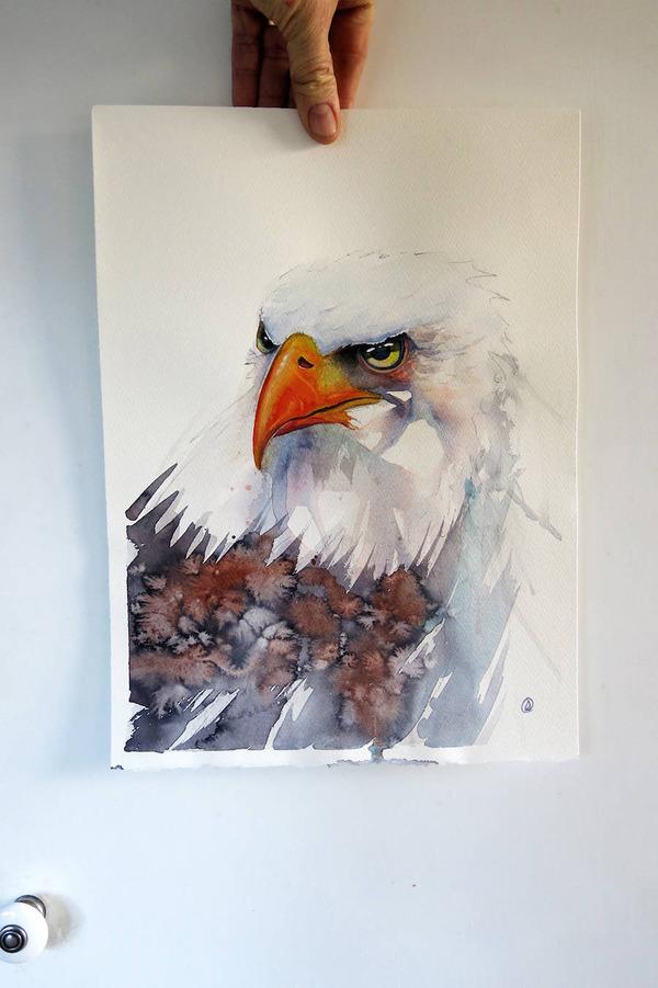 フクロウやワシなどの鳥類を描いたカラフルな水彩画 (12)