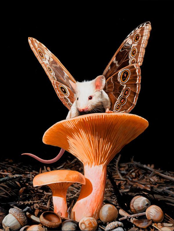 蝶々の羽が生えたネズミやリス小動物を描いた絵 (3)