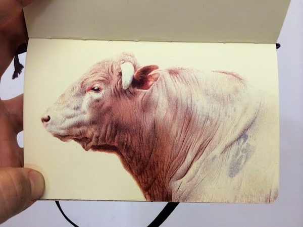 画家が小さなスケッチブックに描くボールペン画がすごい! (8)