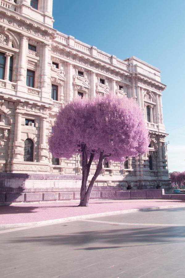 赤外線カメラで撮影されたイタリア・ローマの景色が幻想的 (14)