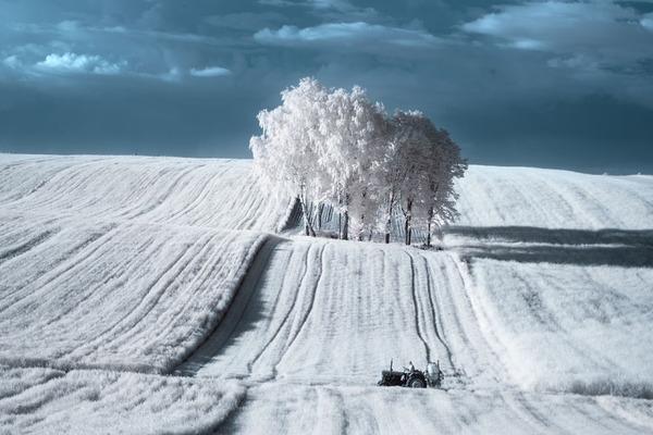 IR(赤外線)カメラで撮影されたポーランドの自然写真が美しい (2)