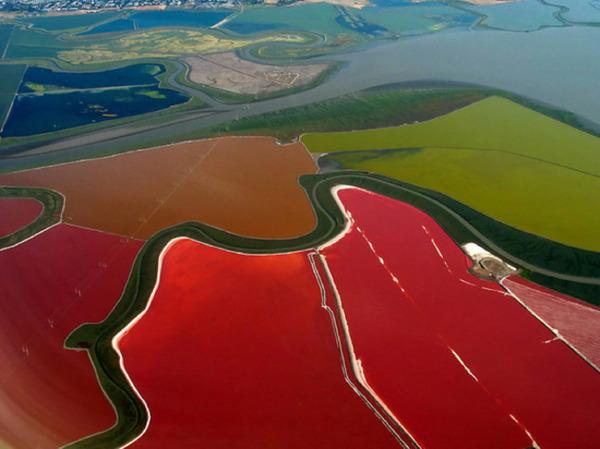 サンフランシスコ湾のthe great cargill salt ponds
