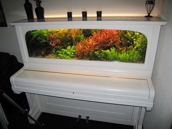 #14 Piano Turned Into An Aquarium