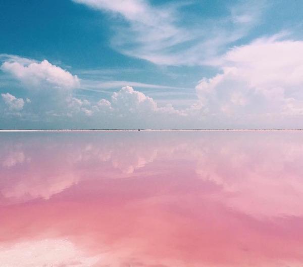 メキシコの塩湖が美しいピンクでミラクルファンシーだよー (7)