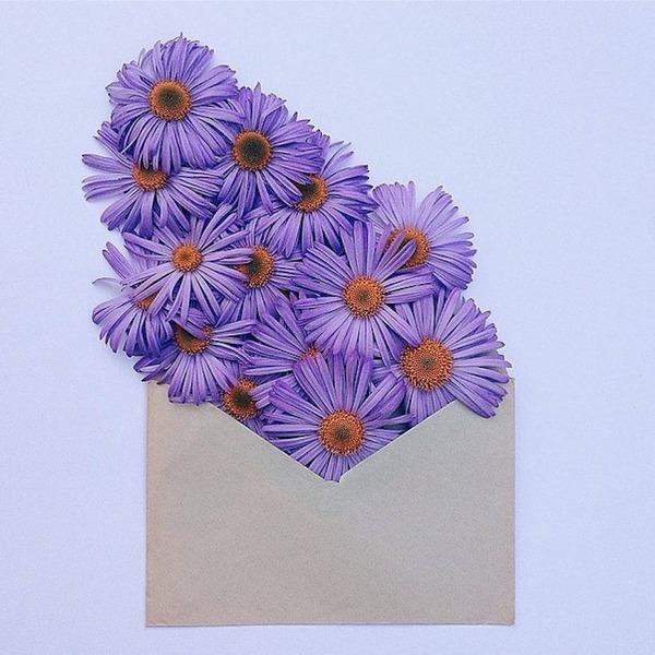 クラフト封筒に入れられた花束 (5)