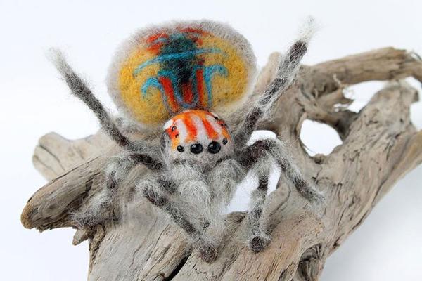蜘蛛のぬいぐるみ