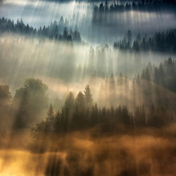 陽が差し込んだポーランドの景色7