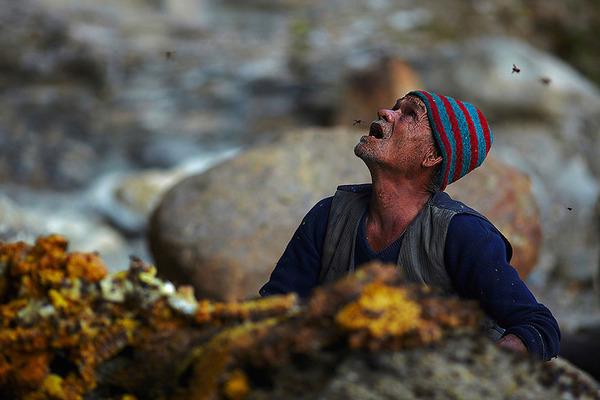巨大な蜂の巣とのバトル!ネパールの伝統的な蜂蜜ハンター (7)
