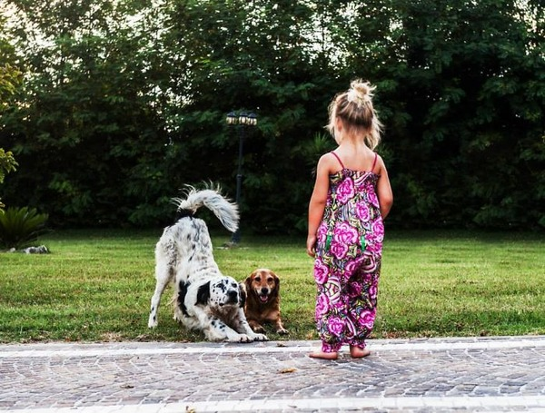 ペットは大切な家族!犬や猫と人間の子供の画像 (36)