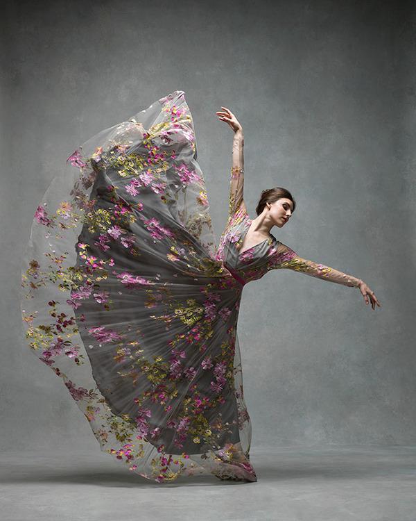 踊りが生み出す芸術。優美なダンサーの写真 (13)