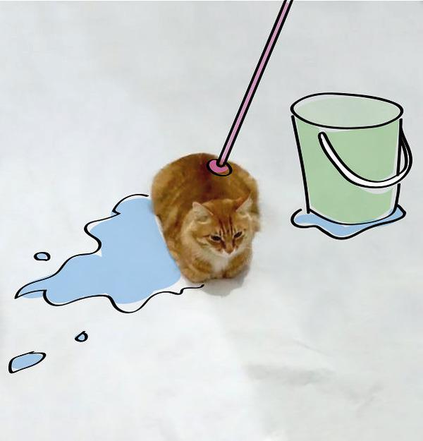 才能の無駄遣い?香箱座りの猫の画像にみんなで落書き! (5)