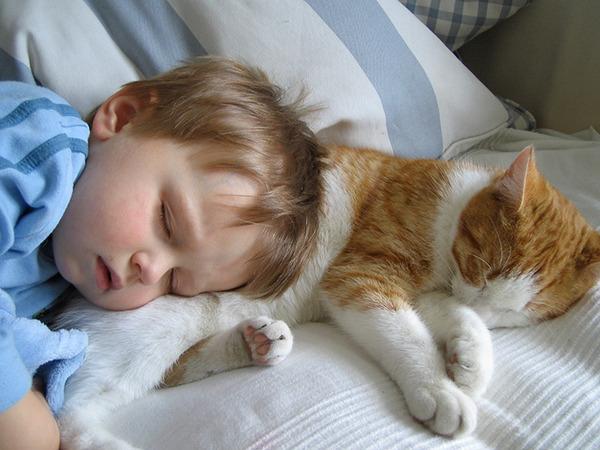 ペットは大切な家族!犬や猫と人間の子供の画像 (9)