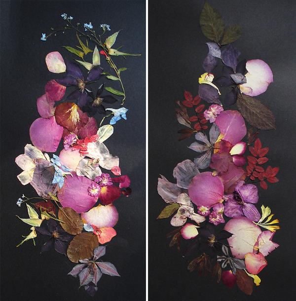 葉や花で自然を描く!植物を素材にした押し花の絵 (4)
