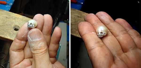 歯もあるよ!日本人デザイナーによる真珠の頭蓋骨 (8)