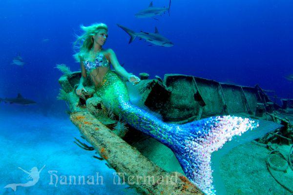 人魚みたい クジラと美女が一緒に海を泳ぐ美しいダイビング写真
