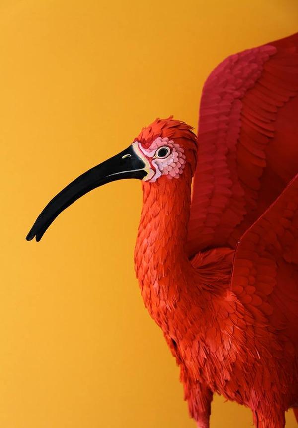 カラフル!リアル!鳥や蝶をモチーフにした紙の彫刻作品 (10)
