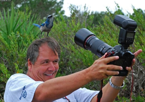 クレイジーなカメラマン 8