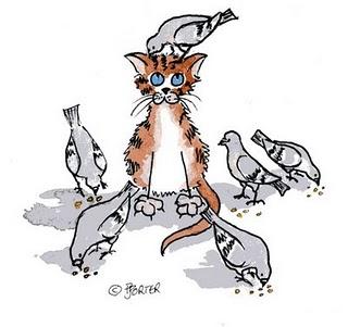 カラカルの画像!麻呂眉と耳の房毛が特徴的なネコ科動物 (3)