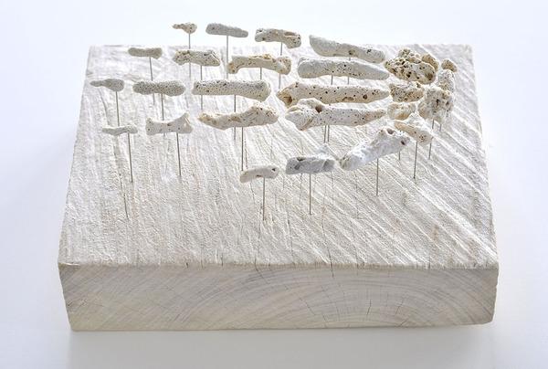 本物みたい。珊瑚の欠片で作る人体の骨格標本 (2)
