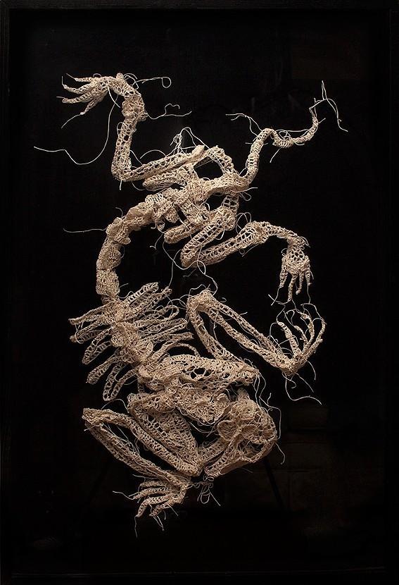 綿糸から作られた動物の骨格彫刻 (4)