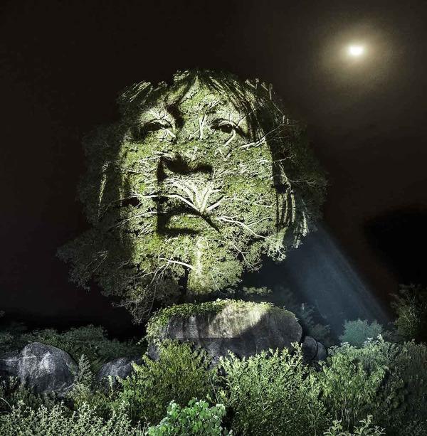 アマゾンの森に投影されたブラジル先住民スルイ族 (6)