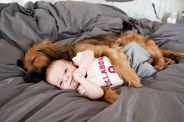 ペットは大切な家族!犬や猫と人間の子供の画像 (95)