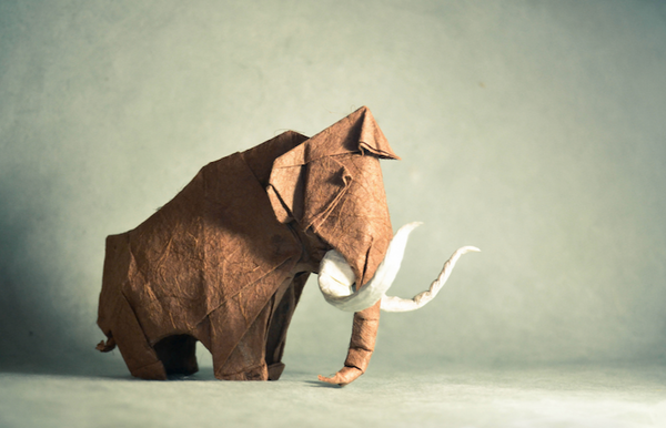 一枚の紙から折り紙で作る動物!折り紙アート (1)