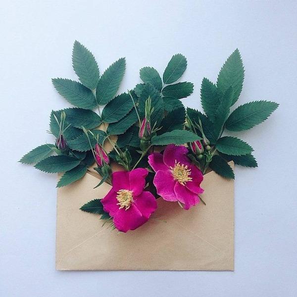 クラフト封筒に入れられた花束 (9)