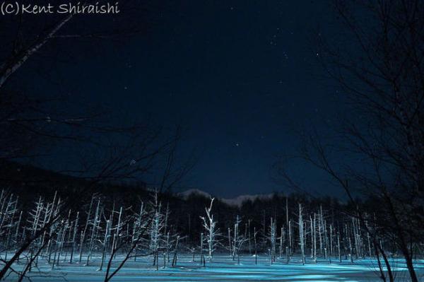 星の見える夜空