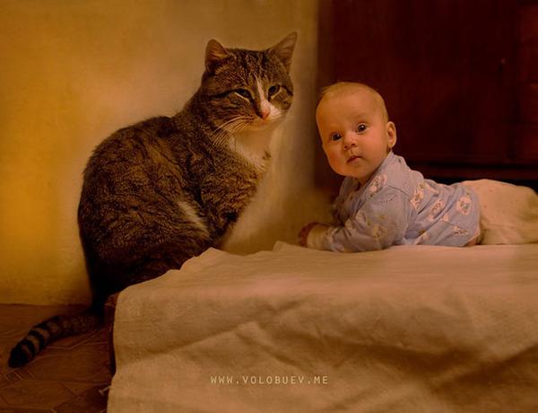 ペットは大切な家族!犬や猫と人間の子供の画像 (27)