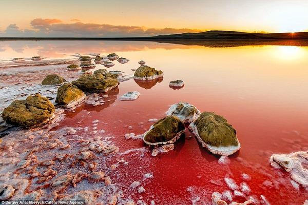 紅く染まる塩湖 Koyashskoye 1
